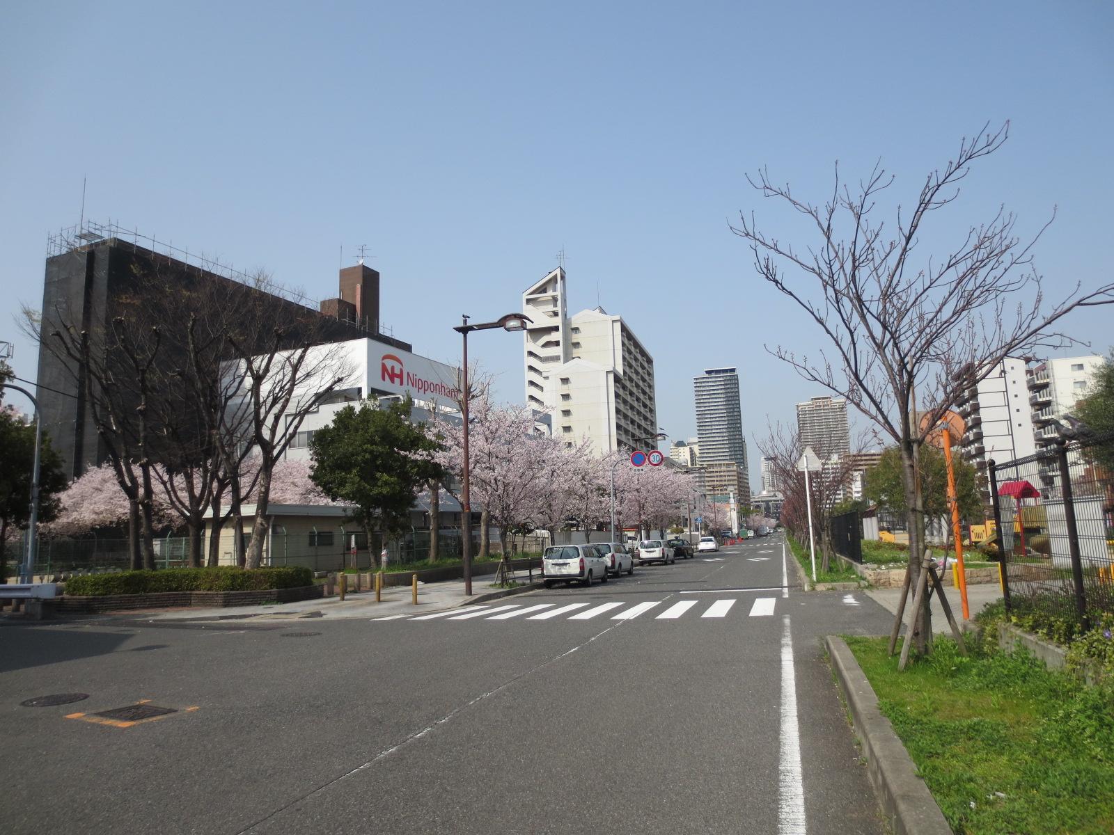 浪速区:ニッポンハム前道路
