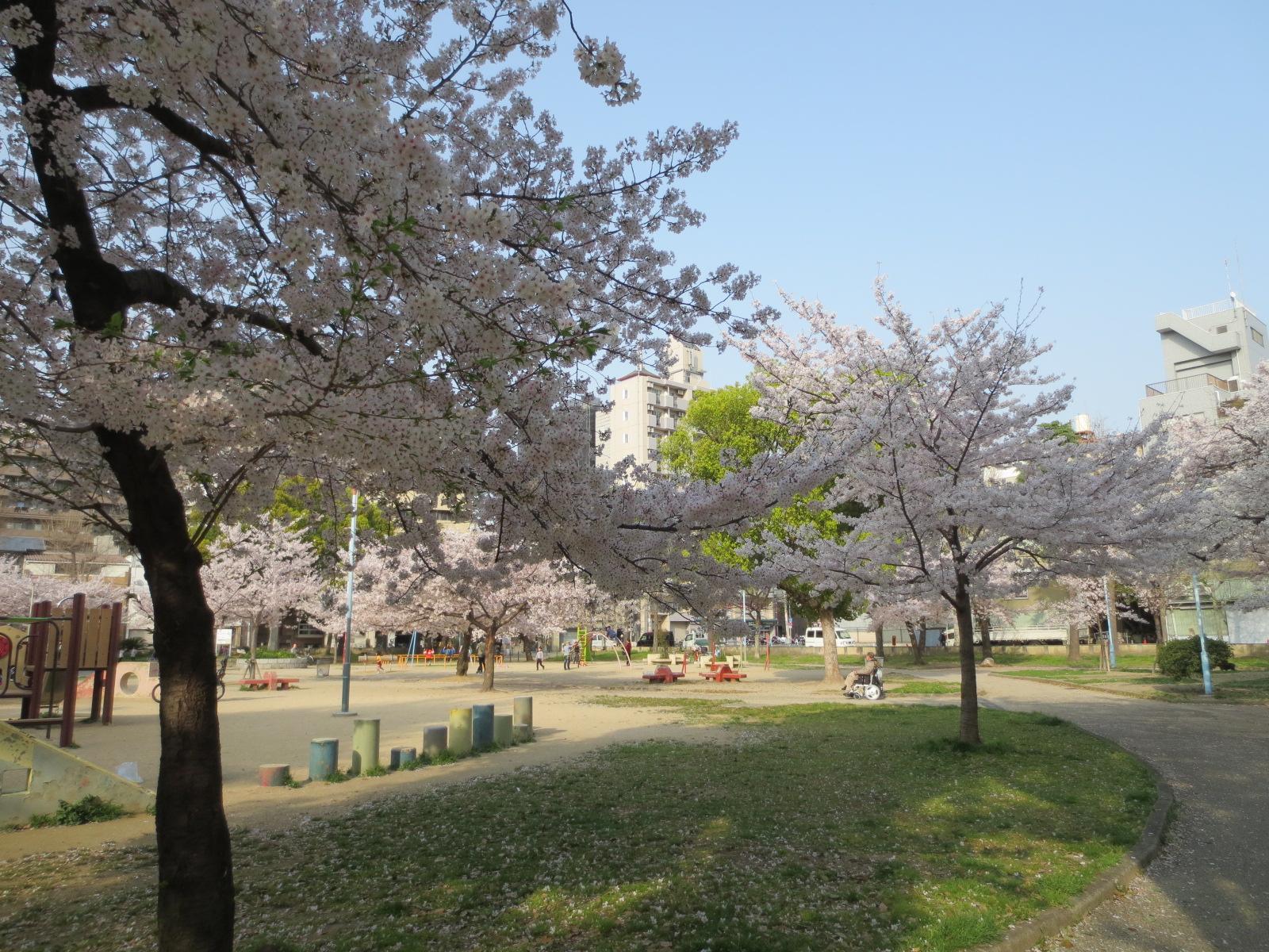 浪速区:愛染公園