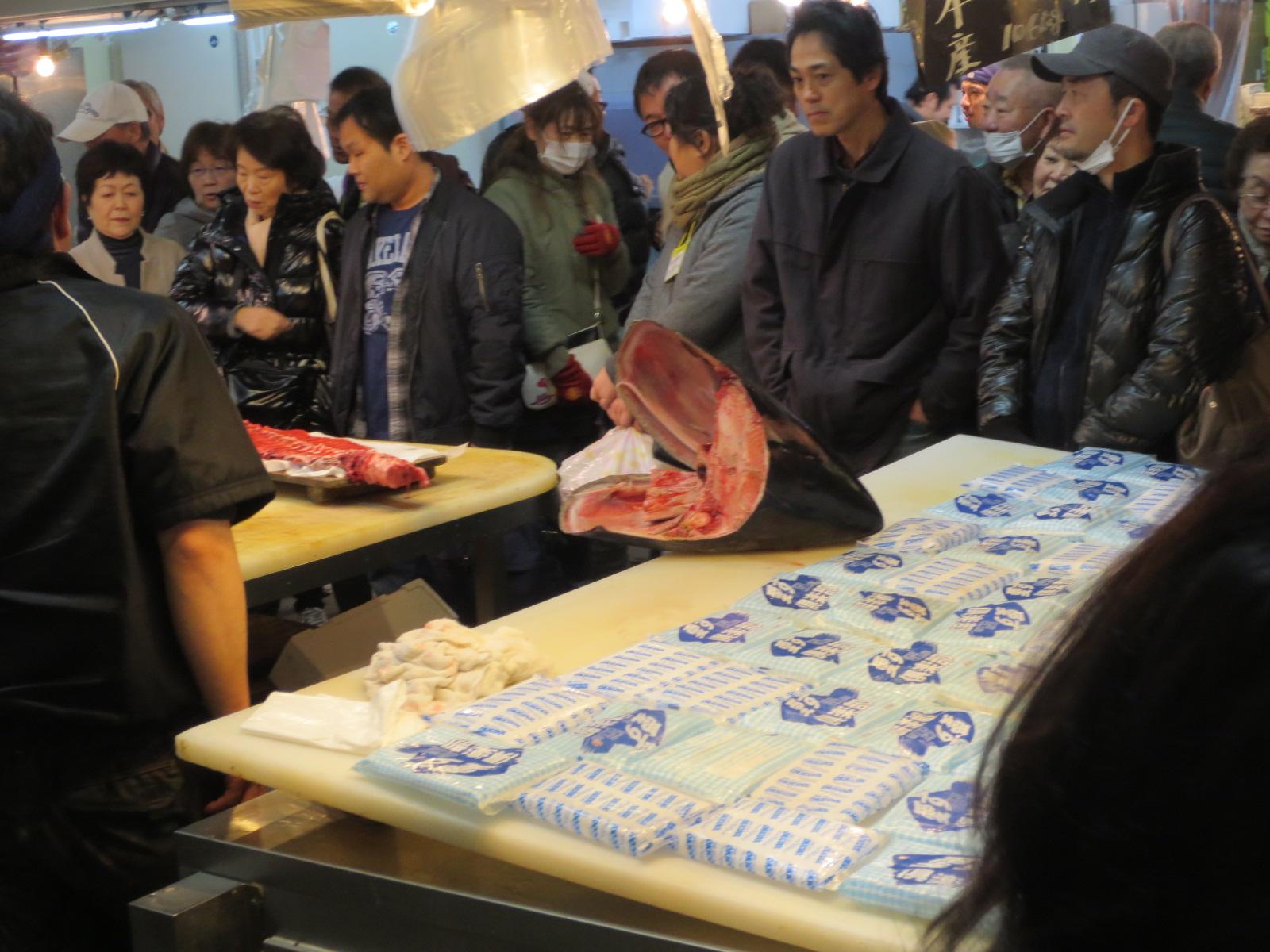 木津市場:マグロ