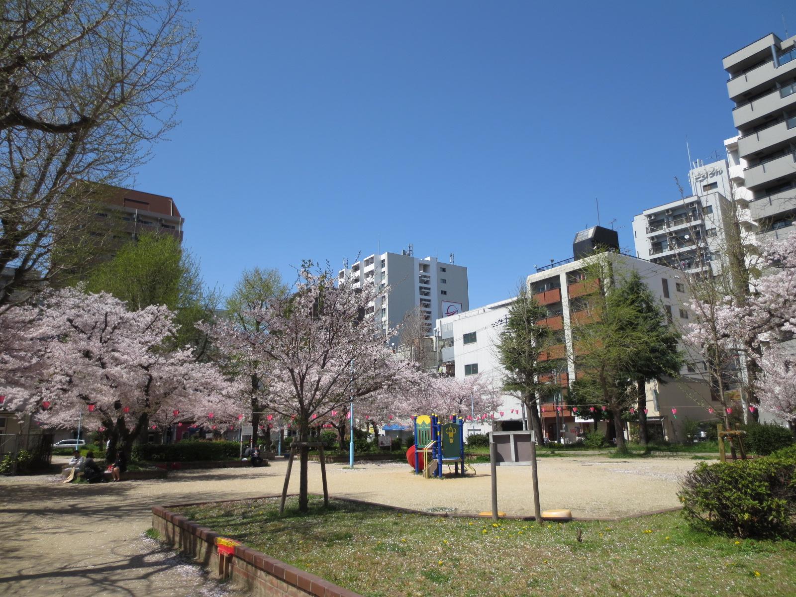 鴎町公園:7
